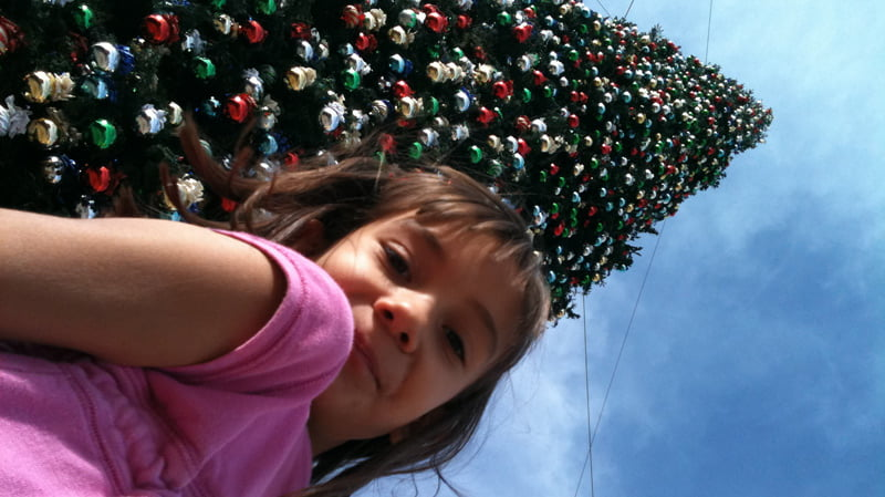 Arizona's Tallest Christmas Tree in Anthem AZ