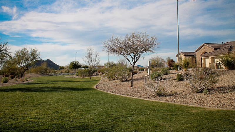 cibola vista green belt