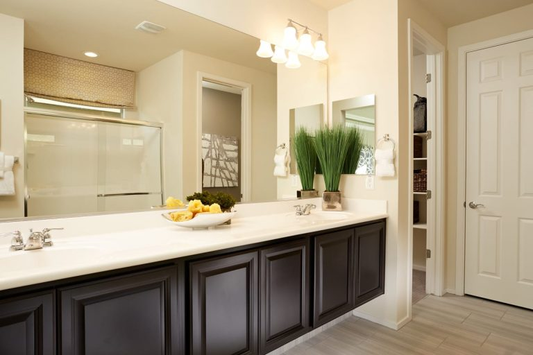 Pyramid Peak Pulte Cosenza - master bath double sinks
